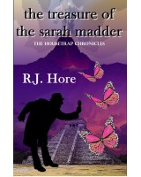 The Treasure Of The Sarah Madder - ebook