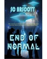 End Of Normal - print